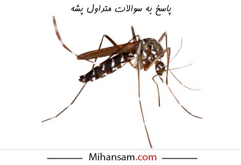 پاسخ به سوالات مرتبط با پشه ها
