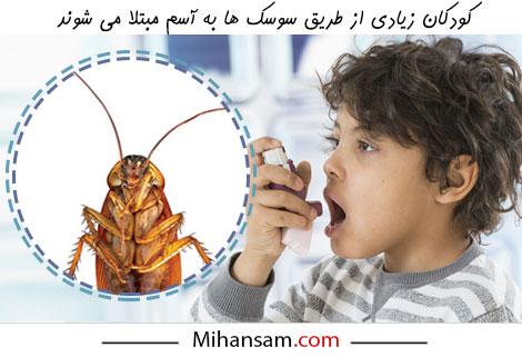 آسم، یکی از شایع ترین بیماری های ناشی از سوسک است