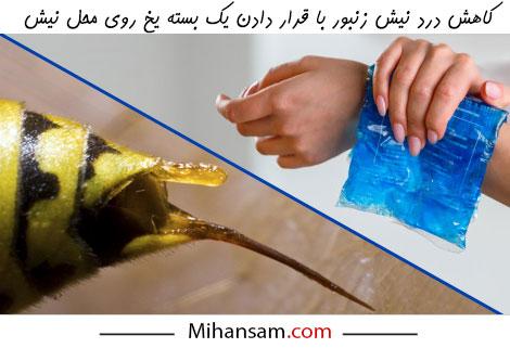 برای کاهش درد ناشی از نیش زنبور روی آن یک بسته یخ قرار دهید
