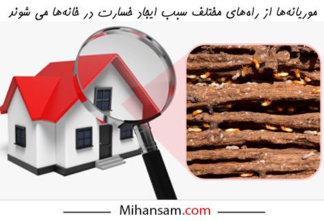 خسارات ناشی از موریانه در خانه ها