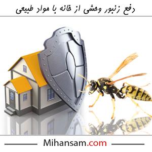 روش های طبیعی دفع زنبور وحشی