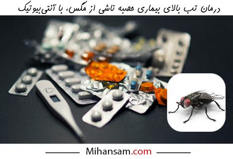 درمان بیماری حصبه ناشی از مگس