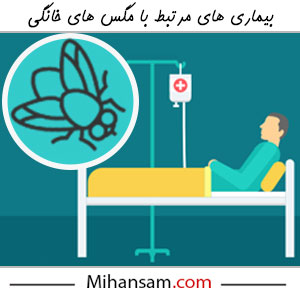 بیماری های مرتبط با مگس ها