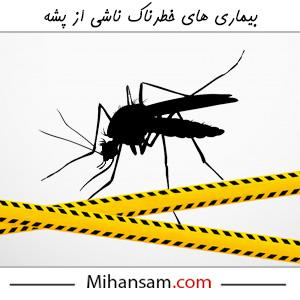 بیماری های خطرناک ناشی از پشه